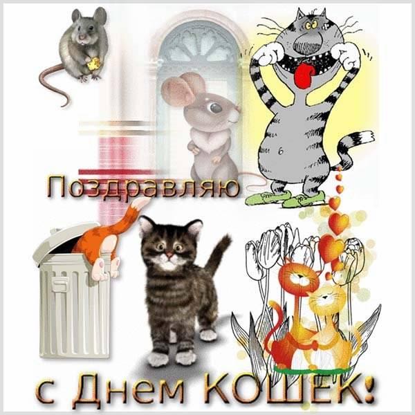 Открытка на день кошек международный - скачать бесплатно на otkrytkivsem.ru