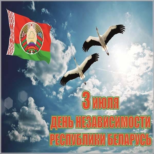 Открытка на день независимости Беларуси - скачать бесплатно на otkrytkivsem.ru