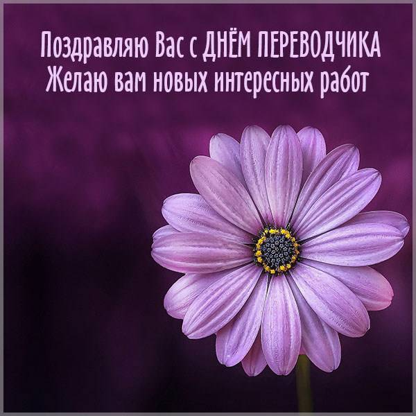 Открытка на день переводчика с поздравлением - скачать бесплатно на otkrytkivsem.ru