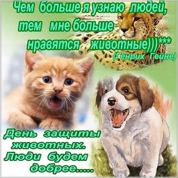 Открытка на день животных - скачать бесплатно на otkrytkivsem.ru