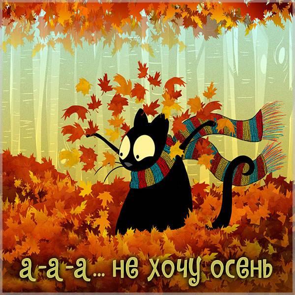 Открытка не хочу осень прикольная - скачать бесплатно на otkrytkivsem.ru