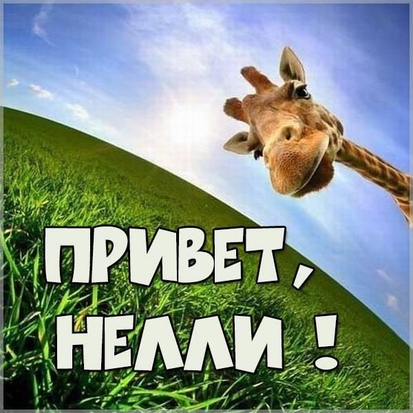 Открытка Нелли привет - скачать бесплатно на otkrytkivsem.ru