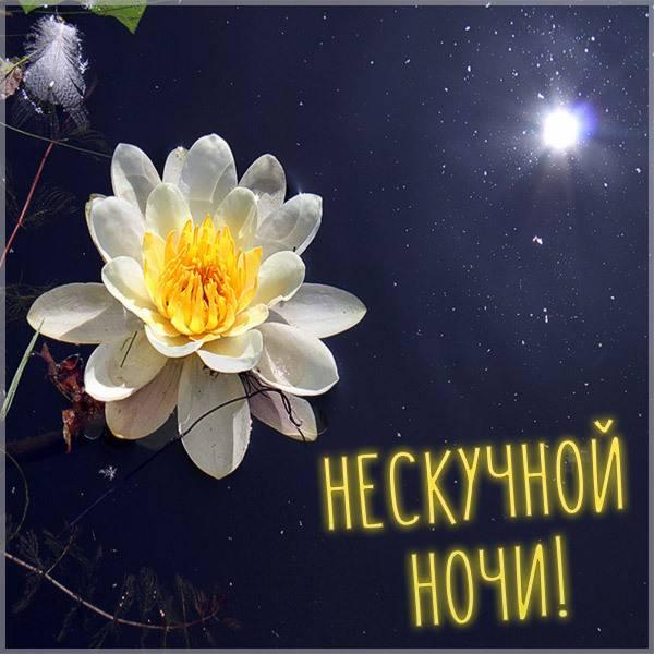 Открытка нескучной ночи - скачать бесплатно на otkrytkivsem.ru