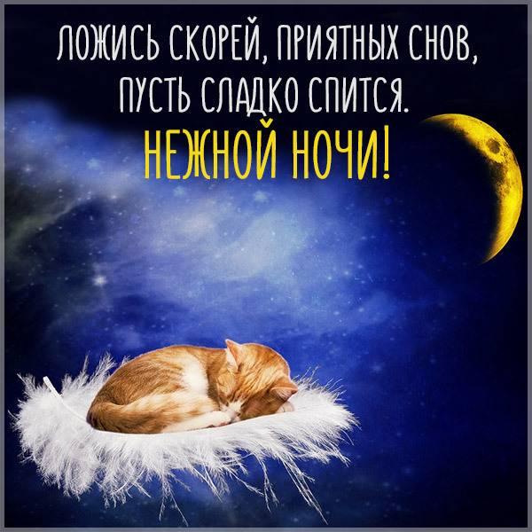 Открытка нежной ночи сладких снов - скачать бесплатно на otkrytkivsem.ru