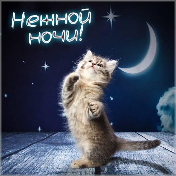 Открытка нежной ночи - скачать бесплатно на otkrytkivsem.ru