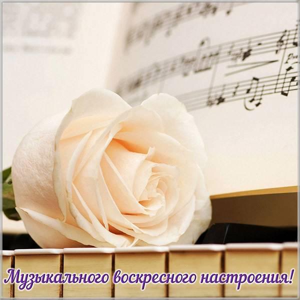 Открытка о воскресном дне - скачать бесплатно на otkrytkivsem.ru