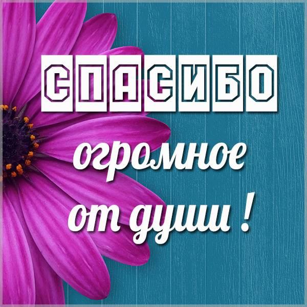 Открытка огромное спасибо от души - скачать бесплатно на otkrytkivsem.ru