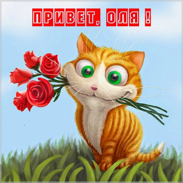 Открытка Оле с приветом - скачать бесплатно на otkrytkivsem.ru