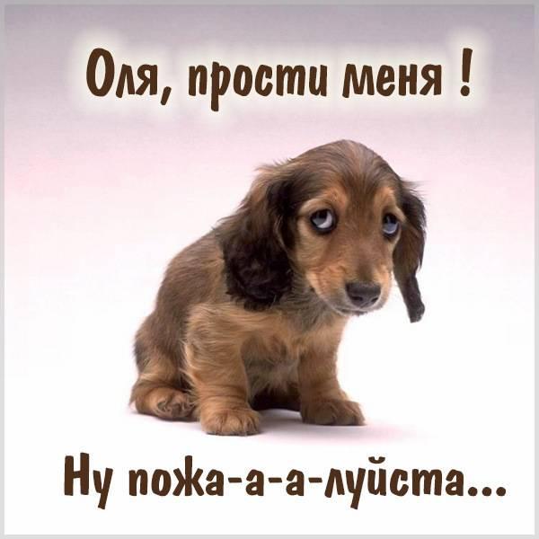 Открытка Оля прости меня - скачать бесплатно на otkrytkivsem.ru