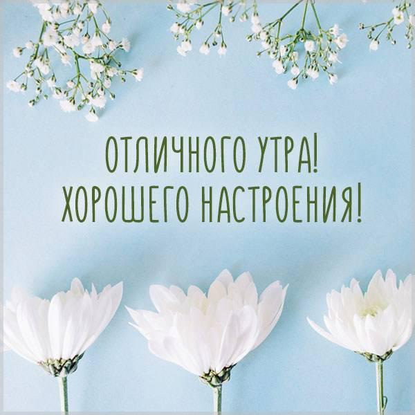 Открытка отличного утра и хорошего настроения - скачать бесплатно на otkrytkivsem.ru