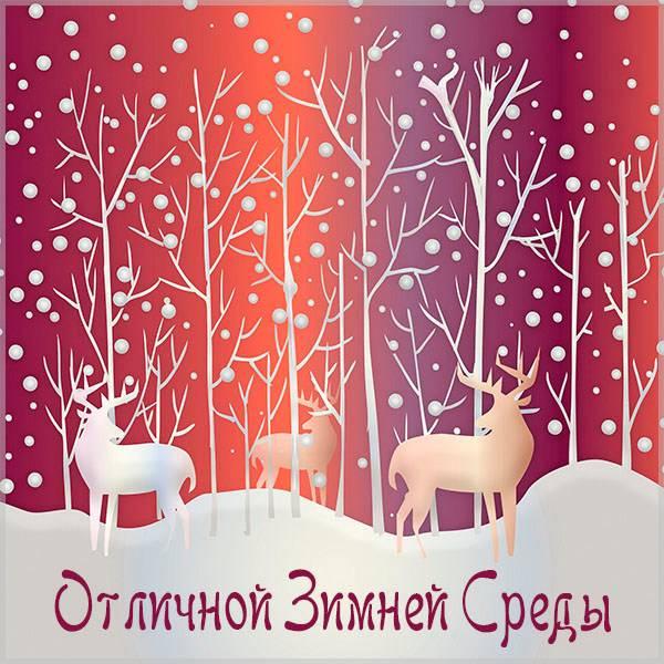 Открытка отличной зимней среды - скачать бесплатно на otkrytkivsem.ru
