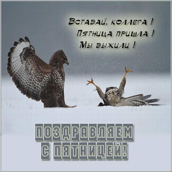 Открытка поздравление с пятницей с юмором - скачать бесплатно на otkrytkivsem.ru