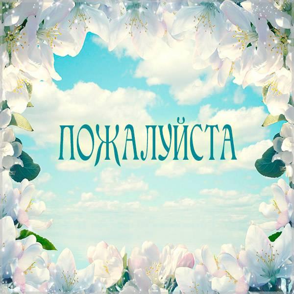 Открытка пожалуйста бесплатная красивая - скачать бесплатно на otkrytkivsem.ru