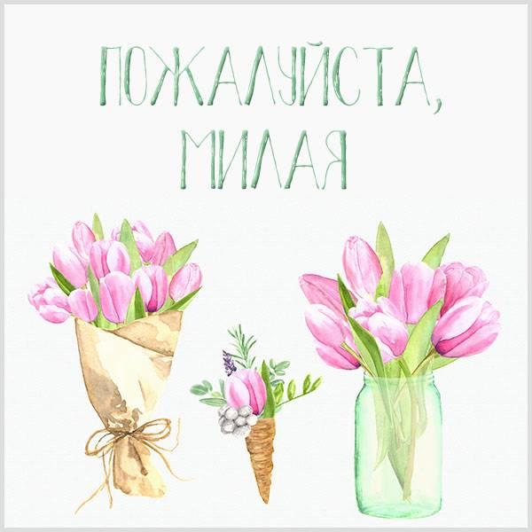 Открытка пожалуйста милая - скачать бесплатно на otkrytkivsem.ru
