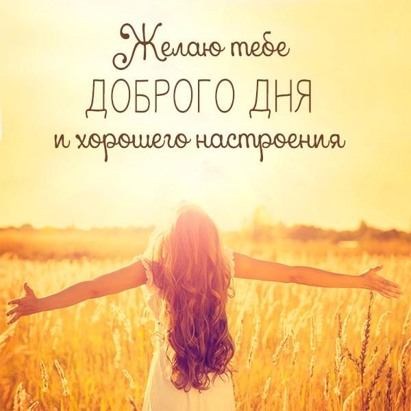 Открытка пожелание доброго дня и хорошего настроения - скачать бесплатно на otkrytkivsem.ru