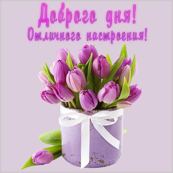 Открытка пожелание доброго дня и отличного настроения - скачать бесплатно на otkrytkivsem.ru