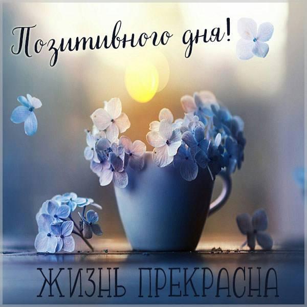 Открытка позитивного дня - скачать бесплатно на otkrytkivsem.ru