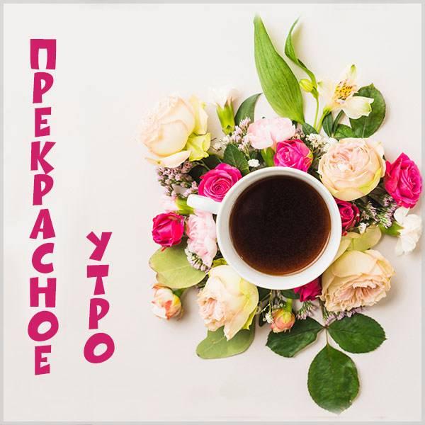 Открытка прекрасное утро - скачать бесплатно на otkrytkivsem.ru