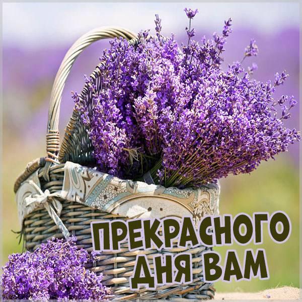 Открытка прекрасного дня вам - скачать бесплатно на otkrytkivsem.ru