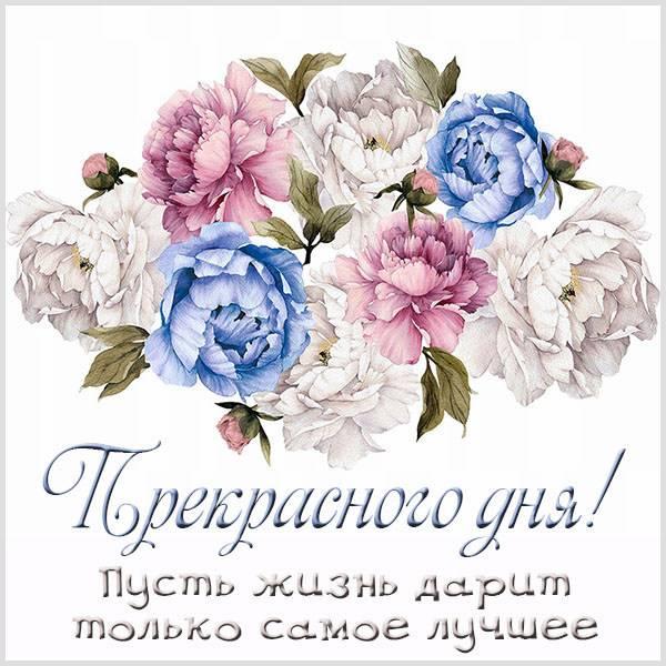Открытка прекрасного дня женщине - скачать бесплатно на otkrytkivsem.ru