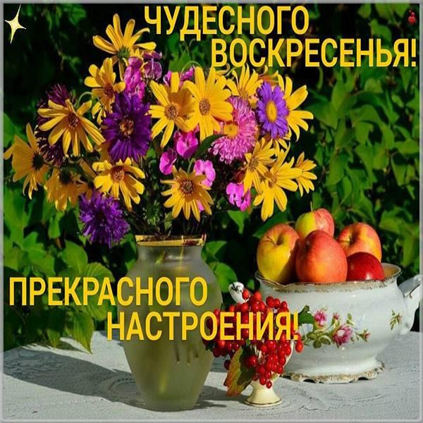 Открытка прекрасного воскресного дня и настроения - скачать бесплатно на otkrytkivsem.ru