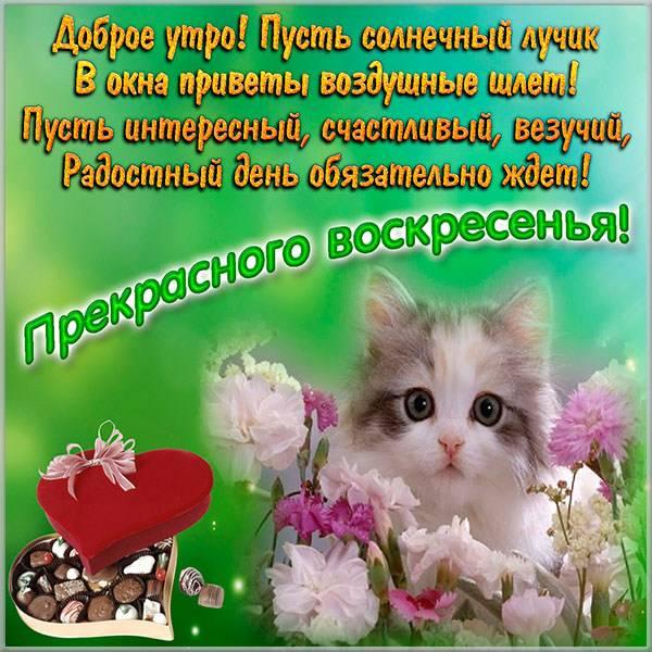 Открытка прекрасного воскресного дня - скачать бесплатно на otkrytkivsem.ru