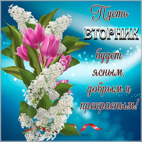 Открытка прекрасного вторника - скачать бесплатно на otkrytkivsem.ru