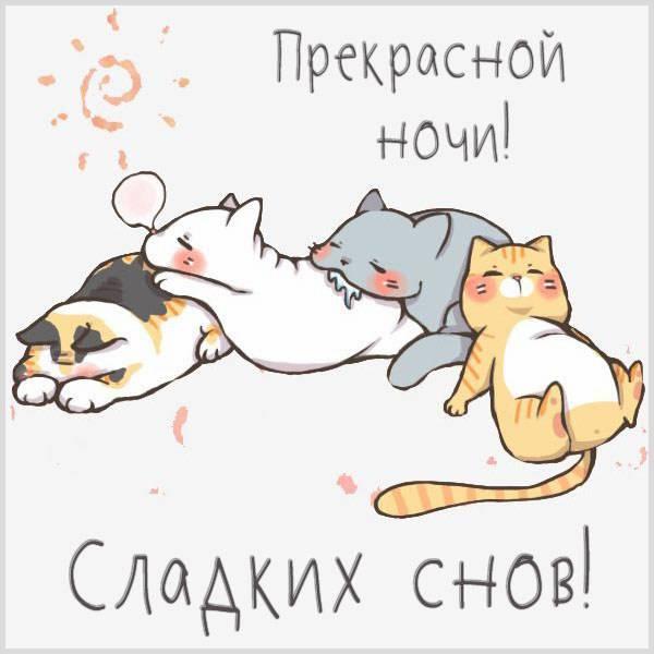 Открытка прекрасной ночи сладких снов - скачать бесплатно на otkrytkivsem.ru