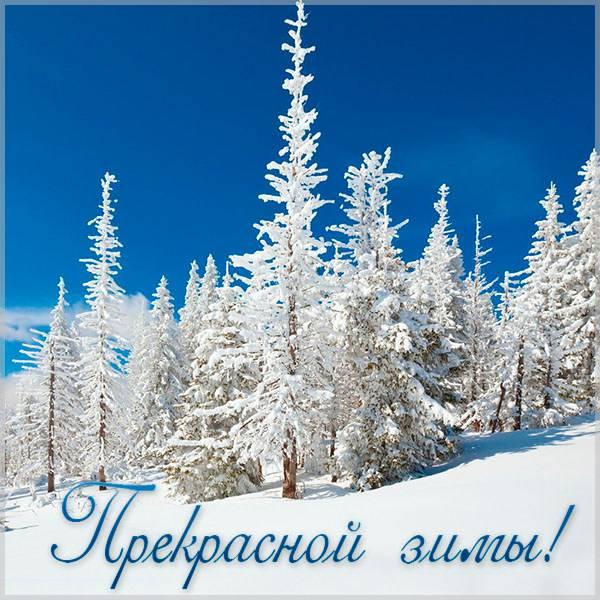 Открытка прекрасной зимы - скачать бесплатно на otkrytkivsem.ru