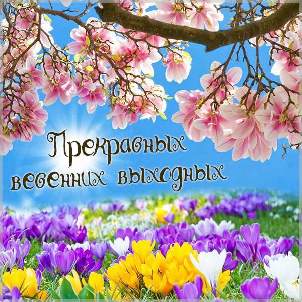Открытка прекрасных весенних выходных - скачать бесплатно на otkrytkivsem.ru