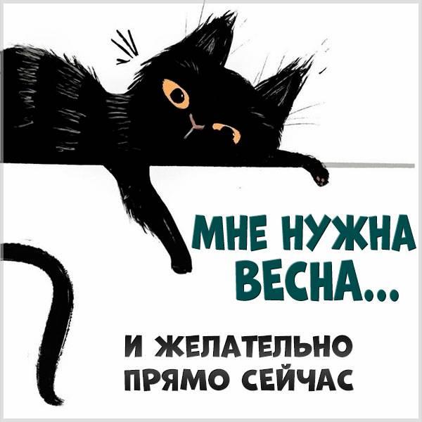Открытка прикольная ждем весну - скачать бесплатно на otkrytkivsem.ru