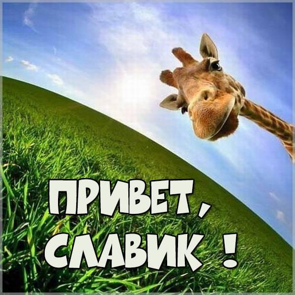 Открытка привет Славик - скачать бесплатно на otkrytkivsem.ru