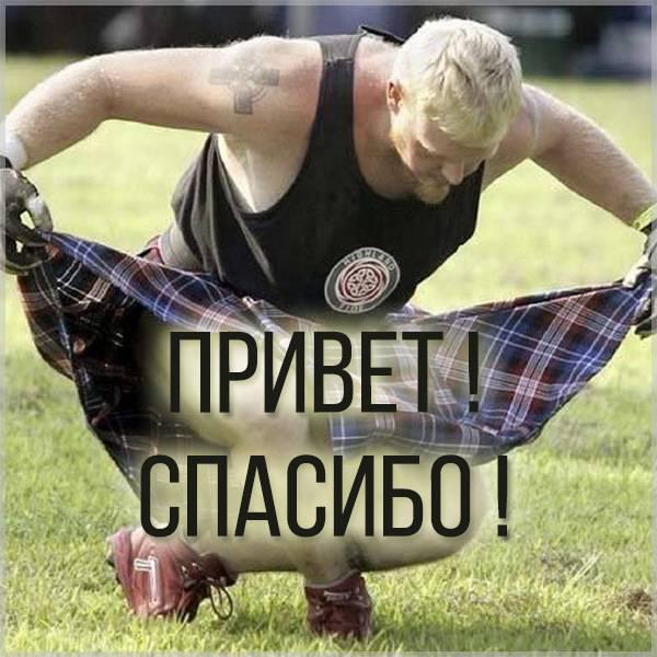 Открытка привет спасибо - скачать бесплатно на otkrytkivsem.ru