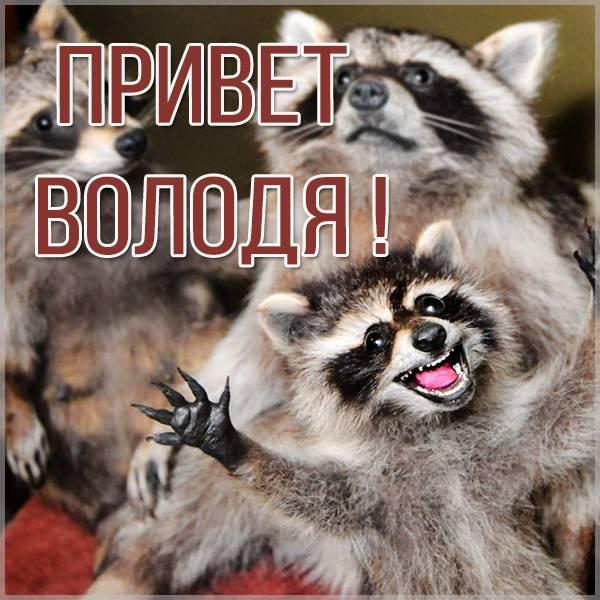 Открытка привет Володя - скачать бесплатно на otkrytkivsem.ru