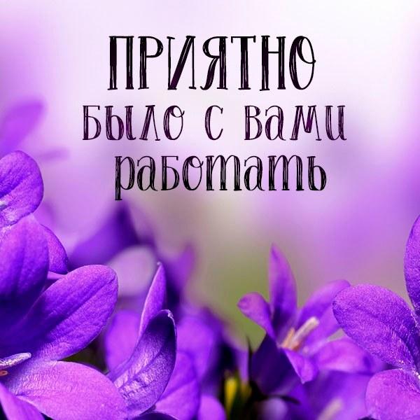 Открытка приятно было с вами работать - скачать бесплатно на otkrytkivsem.ru