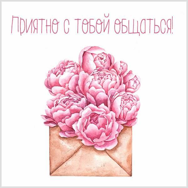 Открытка приятно с тобой общаться - скачать бесплатно на otkrytkivsem.ru