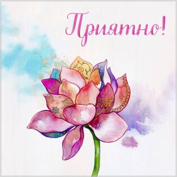 Открытка приятно - скачать бесплатно на otkrytkivsem.ru