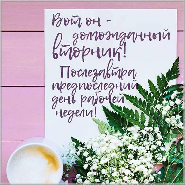 Открытка про день недели вторник - скачать бесплатно на otkrytkivsem.ru