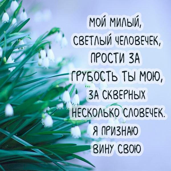 Открытка прости меня друг - скачать бесплатно на otkrytkivsem.ru