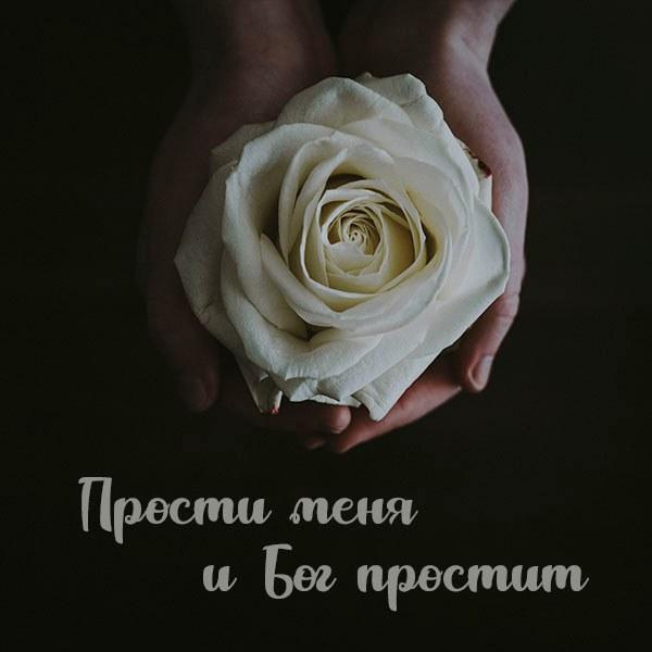 Открытка прости меня и Бог простит - скачать бесплатно на otkrytkivsem.ru