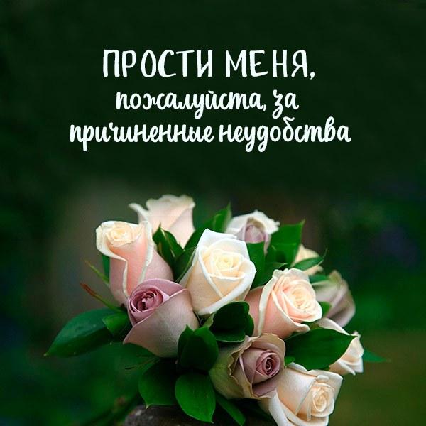 Открытка прости меня пожалуйста за причиненная неудобства - скачать бесплатно на otkrytkivsem.ru