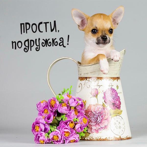 Открытка прости подружка - скачать бесплатно на otkrytkivsem.ru