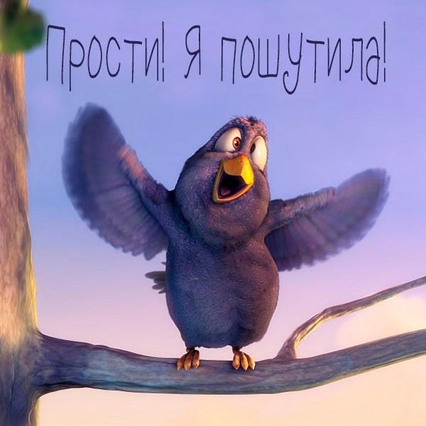 Открытка прости я пошутила - скачать бесплатно на otkrytkivsem.ru