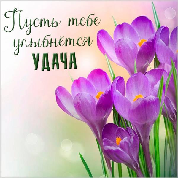 Открытка пусть тебе улыбнется удача - скачать бесплатно на otkrytkivsem.ru