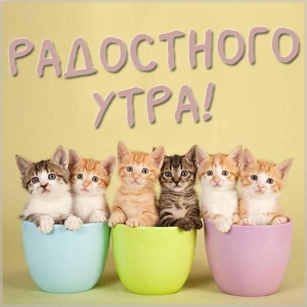 Открытка радостного утра - скачать бесплатно на otkrytkivsem.ru