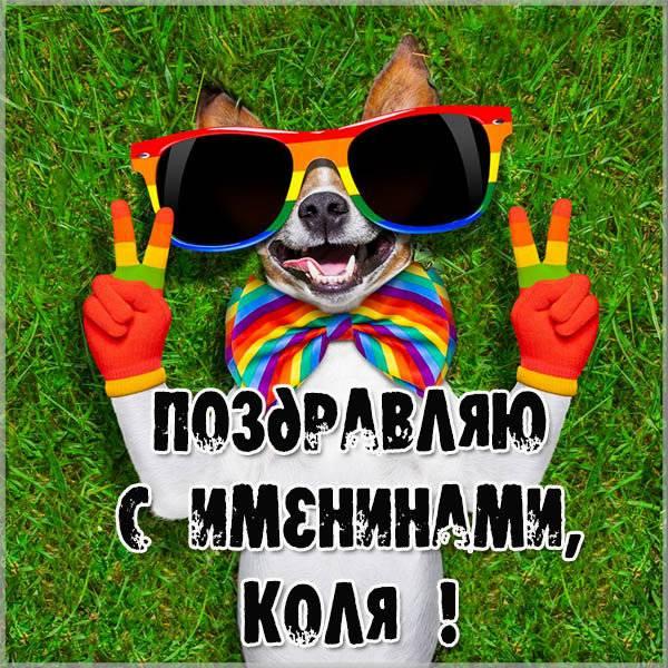 Открытка с днем Коли для Коли - скачать бесплатно на otkrytkivsem.ru