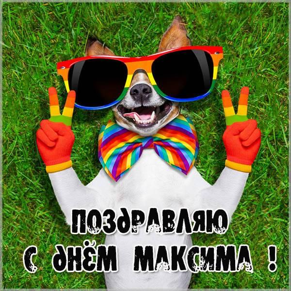 Открытка с днем Максима для Максима - скачать бесплатно на otkrytkivsem.ru