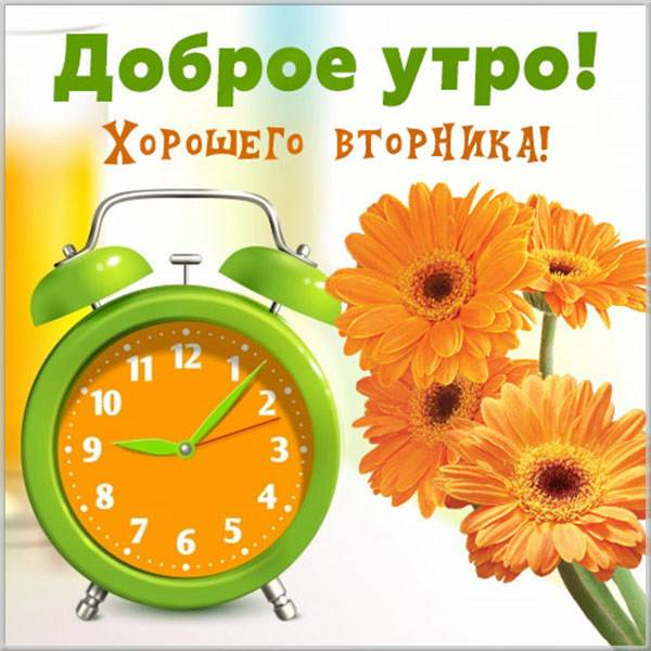 Открытка с днем недели вторник - скачать бесплатно на otkrytkivsem.ru