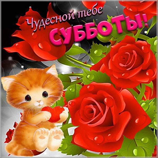 Открытка с днем субботы - скачать бесплатно на otkrytkivsem.ru