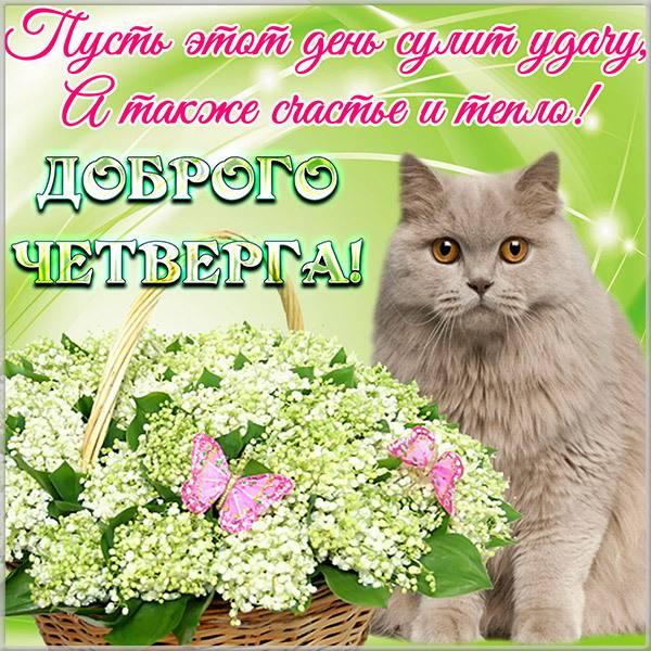 Открытка с добрым днем четверга - скачать бесплатно на otkrytkivsem.ru